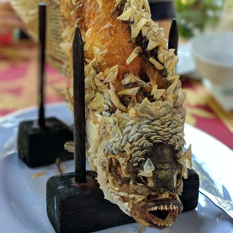Nasratá ryba