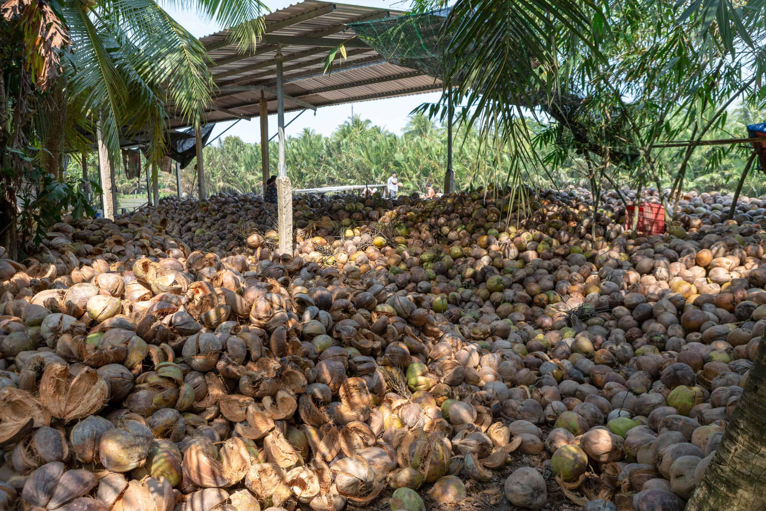 Coconut candy lady Co Tu Ha